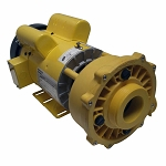 Coast Spa Executive 56 Frame Waterway Yellow Pump 5.0 HP 230 volts 2 speed 3722020-6310
