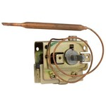 Eaton Mears Thermostat SPDT 12