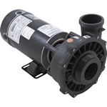 Executive Waterway 48 Frame Pump 1.5 HP 230 volts 2 speed 2 1/2