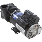 Waterway 48 Frame EX2 Spa Pump 3.0 HP 230 Volts 2 Speed 3421821-1U