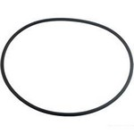 Waterway Spa Flo Faceplate O-Ring 805-0248