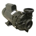 Sta-Rite Dura Jet Spa Pump 1.0 HP 115 Volts DJAYEA-0003