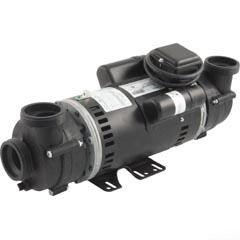 Cal Spa Balboa Water Group 4.0 HP Dually Spa Pump
