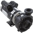 "Hi Flo 48 Frame Pump 4.0 HP 230 volts 2 speed 2"" intake, 2"" discharge 3421621-10"