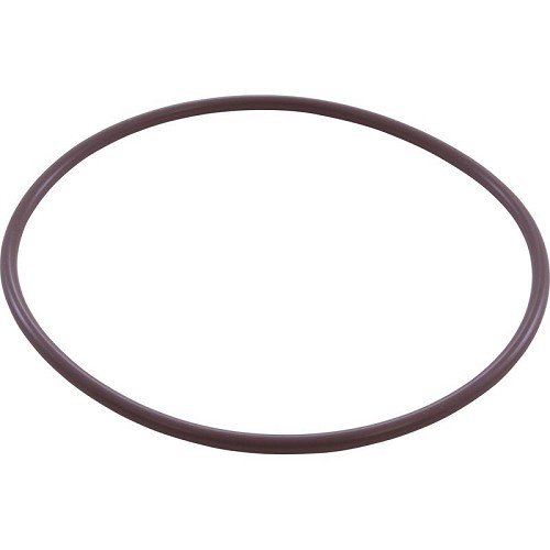 Rainbow RTL and RCF Series Filter O-Ring