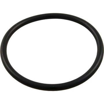 "Aqua Flo Union O-Ring 1.5"" 92200140"